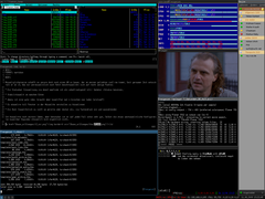 (Screenshot) mc, xosview, MPlayer, irssi, gajim