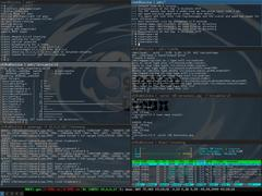 (Screenshot) git, synergy, htop, urxvt